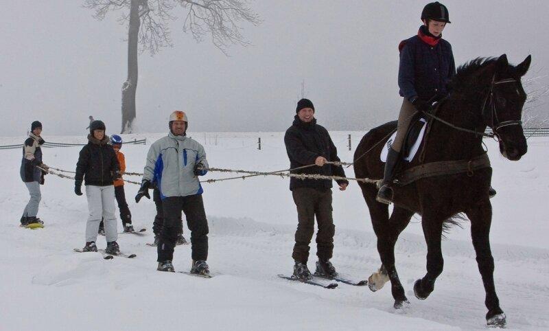 """<p class=""""artikelinhalt"""">Zur 1. Pferde-Skikjöring-Meisterschaft in Bernsbach hatten die Starter auch mit dem Wetter zu kämpfen.</p>"""