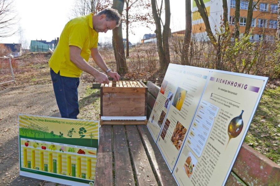 Diese Brachfläche neben der Jakobusschule in Mülsen (rechts im Hintergrund) erhält bald ein neues Aussehen. Imker Peter Gruner beteiligt sich an der Gestaltung eines Lehrpfades über Bienen.