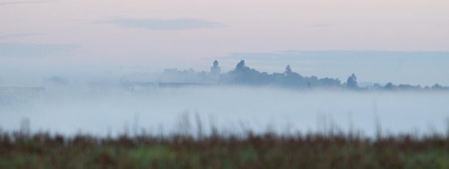 Nebelband liegt am Morgen über dem herbstlichen Elstertal