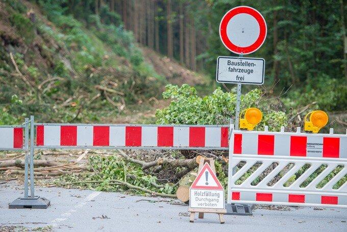 Verkehrschaos im Erzgebirge - und der Forst fällt noch Bäume