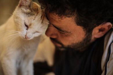 """Mohammed Alaa al-Jaleel, auch bekannt als """"der Katzenmann von Aleppo"""", versorgt eine Katze im Ernesto's Cat Sanctuary, das er in Kafr Naya in Syrien betreibt."""