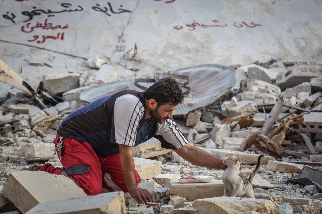 Alaa hilft einer Katze aus den Trümmern eines ausgebombten Gebietes in Khan Shaykhun.