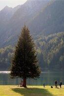 Den bis zu 38 Meter tiefen Antholzer See in Südtirol kann man zu Fuß in einer Stunde umrunden. Oder man springt einfach hinein.