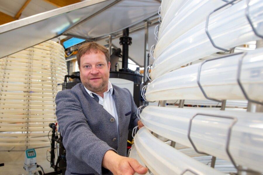 Geschäftsführer Andreas Spranger an dem in Plauen montierten Algenreaktor für Saudi-Arabien: Der kegelstumpfförmige Aufbau der Anlage soll eine optimale Lichtversorgung sicherstellen und so verhindern, dass die in den Schläuchen heranwachsenden Mikroalgen Schatten werfen.