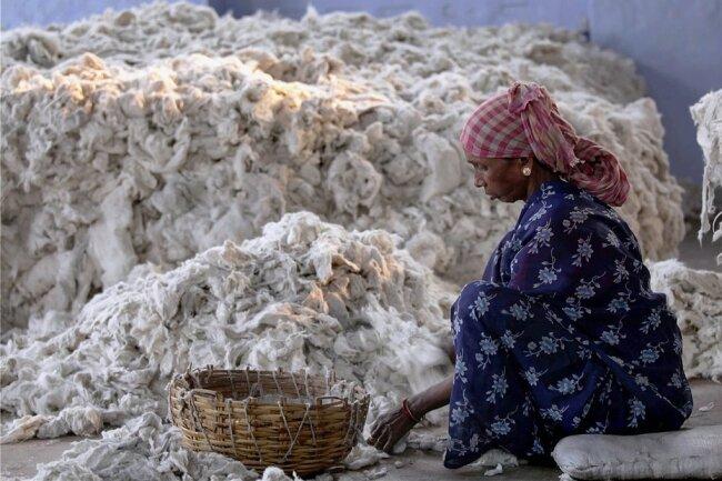 Eine Frau sortiert Baumwolle für den Markt in Indien.