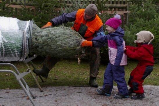Sieh an, es ist was ins Netz gegangen: Der kleine Oskar Weller (rechts) und seine Schwester Mathea haben Spaß beim Baumkauf.