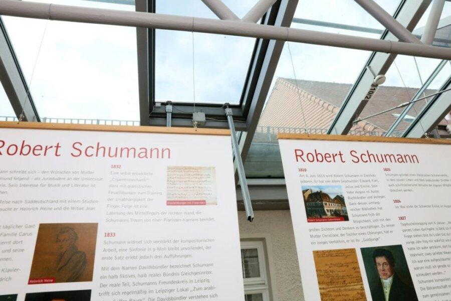 Taubennest verursacht Wassereinbruch im Zwickauer Robert-Schumann-Haus