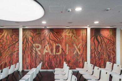 """Die Räume im Carlowitz-Center tragen lateinische Namen. Peter Kallfels gestaltete """"Radix"""", die Wurzel."""