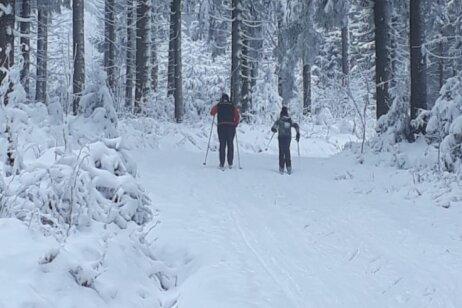 Die ersten Skiläufer sind auf der Kammloipe unterwegs.