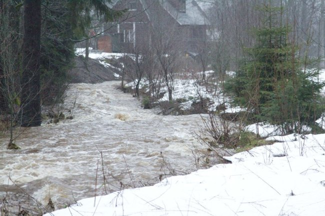 Die Zwickauer Mulde führte am Samstag Hochwasser.