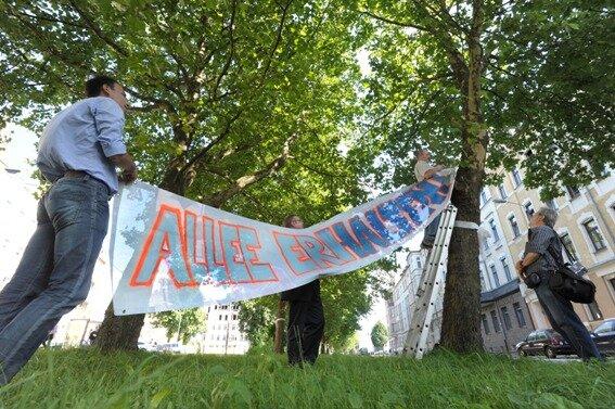 """""""Allee erhalten!"""", steht auf dem Transparent, das Mitglieder des Stadtforums Chemnitz gestern am unteren Ende der Reichenhainer Straße befestigt haben. Um Fällungen zu verhindern, fordern sie, Alternativen zur geplanten Straßenbahntrasse entlang der Reichenhainer Straße zu prüfen."""