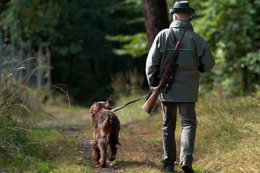 Ein Sachsenforst-Mitarbeiter ist mit Gewehr und Jagdhund unterwegs. Der Staatsbetrieb weist die Kritik an der Jagdpraxis zurück.