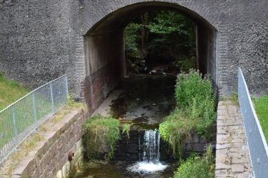 Der Hegebach am Viadukt in Oelsnitz weist erhöhte Schwermetallwerte auf.