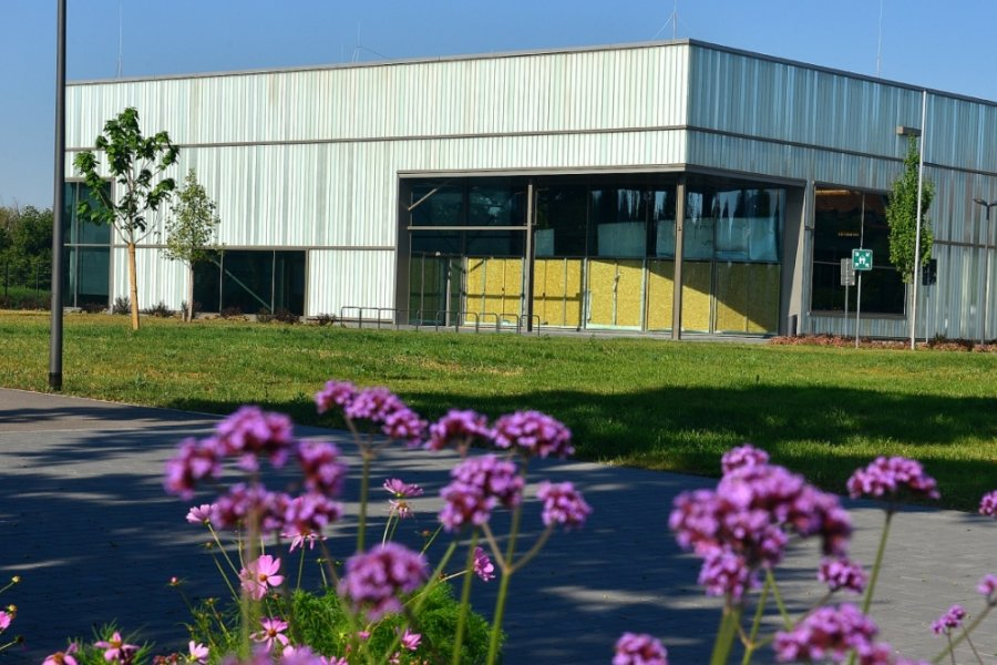 Virtuelle Einblicke in Frankenbergs Zeit-Werk-Stadt gibt es ab Oktober. Das neue Erlebnismuseum in der ehemaligen Blumenhalle der Landesgartenschau wird coronabedingt im März 2021 eröffnet. Noch muss beim Brandschutz nachgebessert werden.