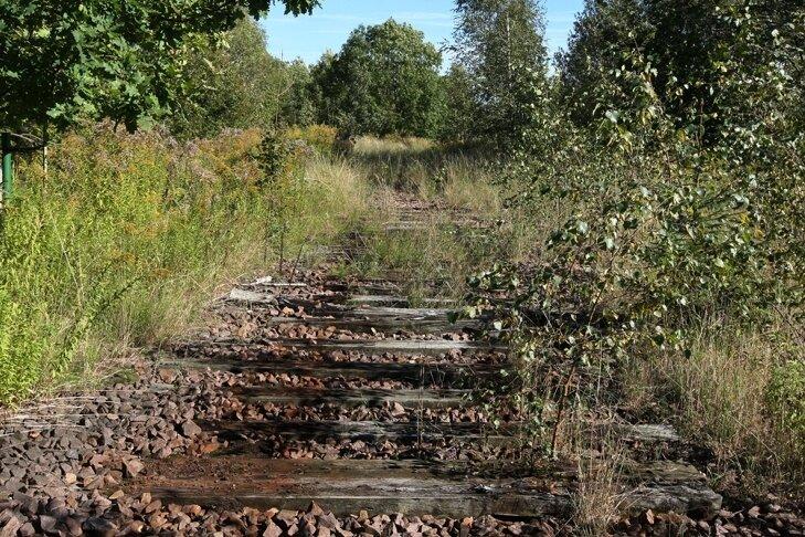 Die Gleise wurden schon abgebaut. Nun liegt die Bahntrasse südlich von Wüstenbrand im Dornröschenschlaf. Das wird vorerst so bleiben.