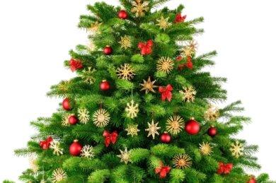 Weihnachtsbäume sollten standhaft bleiben.