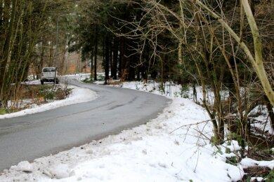 Die Unterbuchwalder Straße schlängelt sich im Wald 300 Meter durch die Gemarkung Schneidenbach und gehört damit zu Reichenbach.
