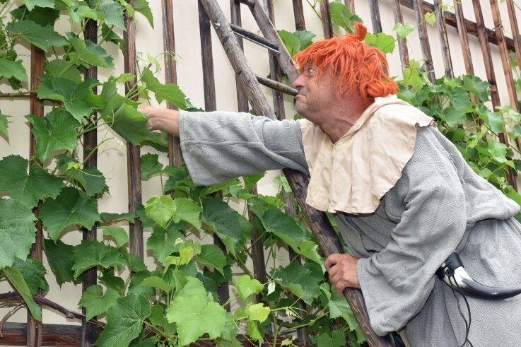Bauer Benedix alias Rolf Pönicke sorgt sich um die Rebstöcke am Gemäuer von Schloss Lichtenwalde.