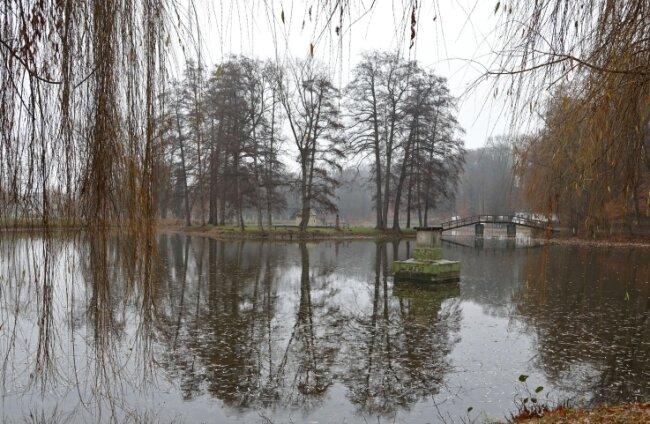 Dem Gründelteich fehlt ein regelmäßiger Zulauf. Die Folge ist ein niedriger Wasserstand. Die Stadt will das Problem lösen.