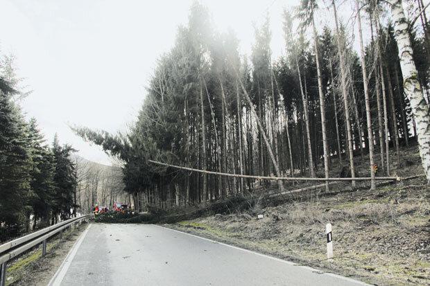 Bäume stürzten am Donnerstag auf die B180 in Erdmanndorf.