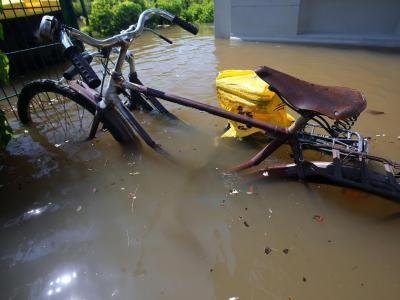 Fahrräder stehen in Magdeburg in der vom Hochwasser der Elbe überfluteten Bleckenburgstraße im Wasser.