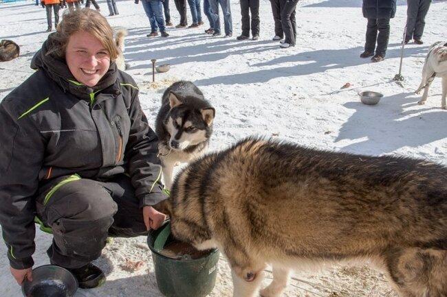 Joana Bebert gibt ihren Schlittenhunden mit Katzenfutter angereichertes Wasser, damit sie mit ausreichend Flüssigkeit versorgt ins Rennen starten.