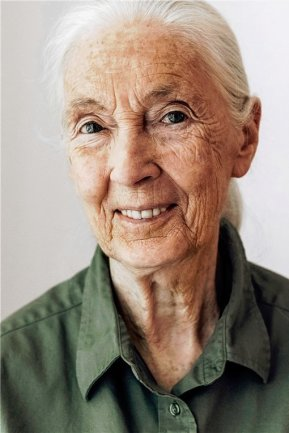 Jane Goodall - Verhaltensforscherin