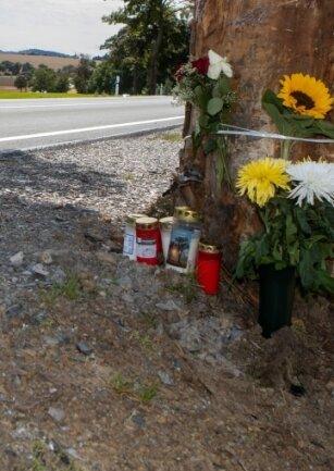 Die Rinde des Unfallbaumes war bei den Unfällen schwer beschädigt worden. Nun soll der Baum komplett verschwinden.