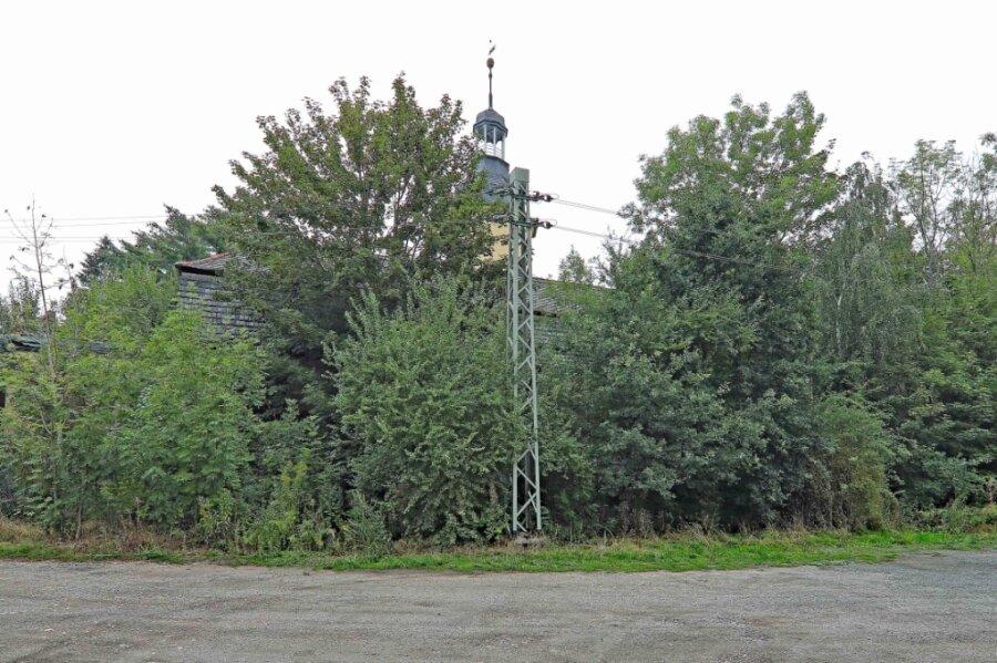 Kaum vorstellbar: Hinter dem Wildwuchs befindet sich das ehemalige Nonnenwohnhaus.