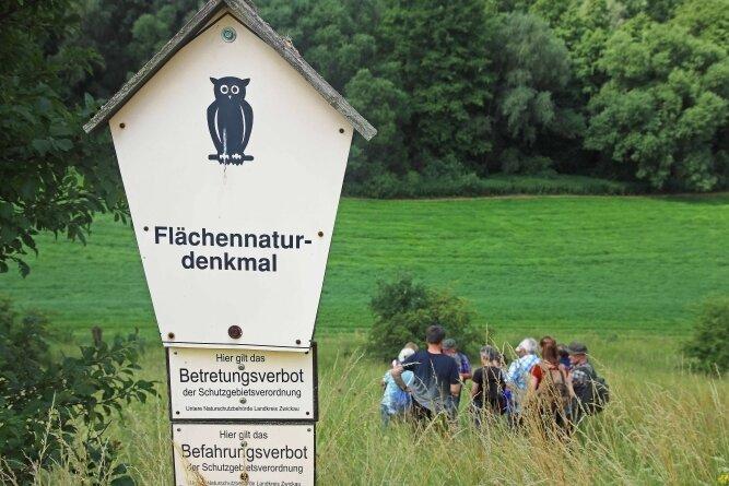 """Das Flächennaturdenkmal """"Döbitzhang"""" bei Crimmitschau war Ziel einer botanischen Exkursion der Kreisnaturschutzstation Gräfenmühle."""