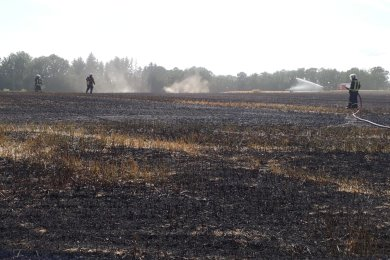 Die Striegistaler Feuerwehr konnte mit Unterstützung benachbarter Wehren aus Roßwein und Hainichen den Feldbrand bis 17 Uhr löschen.
