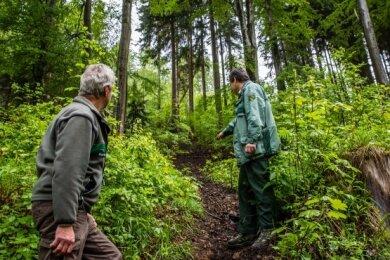 Wolf Katzschmann (l.) und Jens Reinwarth vom Sachsenforst begutachten eine der illegalen Strecken im Revier.