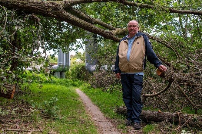 Reinhard König beklagt, dass im Grünbereich zwischen seinem Wohnblock und der Gartenanlage umgefallene Bäume eine Gefahr für die dort vorbeiführende Fernwärmetrasse darstellen. Anwohner, die den unbefestigten Weg nutzen, hatten den Durchgang provisorisch freigeschnitten.