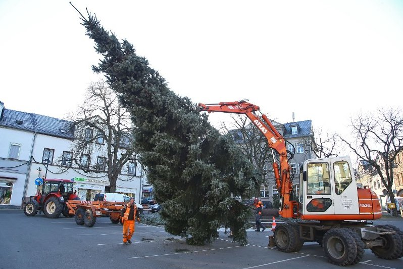 Lichtenstein hat einen neuen Weihnachtsbaum