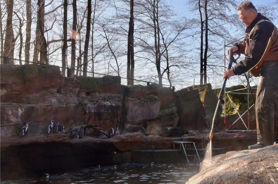 Tierpfleger Mike Richter bei Reinigungsarbeiten im Amerika-Tierpark in Limbach-Oberfrohna.