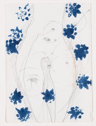 Der weibliche Schoß, von Joseph Beuys unbetitelt und undatiert, ist derzeit im Dresdner Residenzschloss zusammen mit rund 90 weiteren Zeichnungen von ihm zu sehen.
