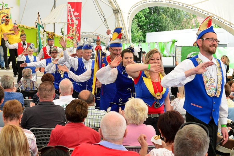 Vor gut einem Jahr präsentierten sich die Karnevalsvereine der Region gemeinsam auf einer Nachmittagsveranstaltung der Landesgartenschau in Frankenberg.