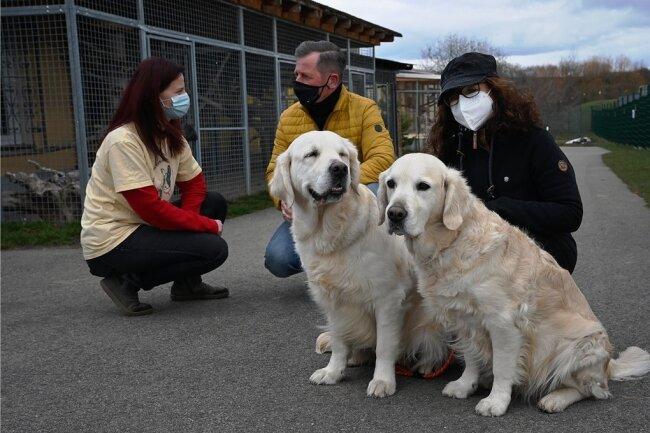 Frank und Ramona Scholz haben mit ihren Hunden Jolene (links) und May (rechts) Futter gespendet. Dass die Golden Retriever die Geschenke lieber selbst gegessen hätten, darf als wahrscheinlich gelten. Nun freuen sich die Schützlinge von Tierheimleiterin Adina Barthel (links).