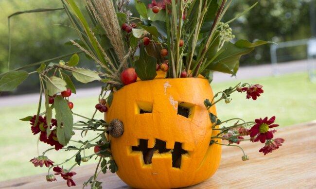 """Halloween-Deko wie solch einen Kürbis als Vase können Kinder im Freizeitzentrum """"Erucula"""" in Mittweida basteln."""