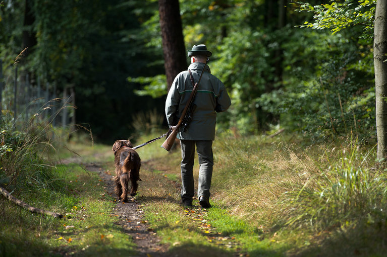 Verband: Angehende Jäger können Ausbildung nicht abschließen