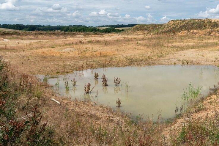 Der Blick auf die vorbereitete künftige Sand- und Kiesgrube bei Elsdorf. Noch in diesem Jahr soll die Förderung beginnen.