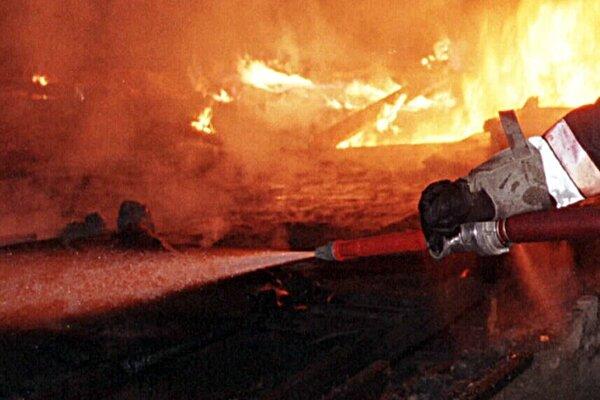Feuer zerstört Bungalow und Bienenstock
