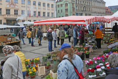 Auf dem Zwickauer Hauptmarkt soll mittwochs ein kurzfristig angesetzter wöchentlicher Markt stattfinden.