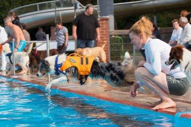 Am kommenden Samstag ist es wieder soweit, denn dann veranstaltet der Förderverein Freibad Penig zum sechsten Mal das traditionelle Hundeschwimmen. Dazu werden 60 bis 80 Vierbeiner mit ihren Herrchen und Frauchen erwartet.