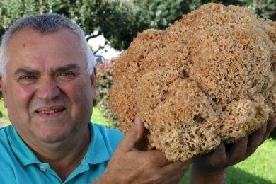 Diese 3,4 Kilogramm schwere Krause Glucke hat der Oberlungwitzer Bernd Rößler gefunden.