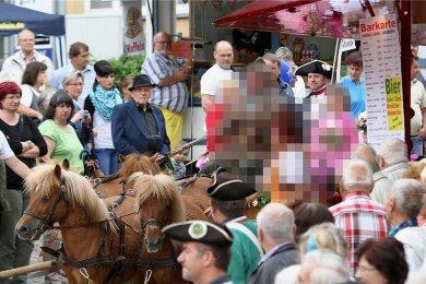 Rosenfest 2016. Die Ponys ziehen eine Kutsche durch die Stadt. Der Pferde-Besitzer hält die Zügel.