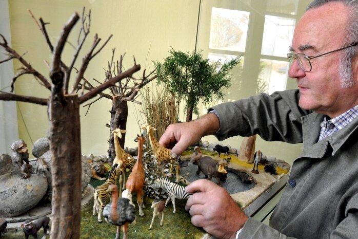 """<p class=""""artikelinhalt"""">Werner Tennstedt aus Reichenbach stellt zur diesjährigen Weihnachtsausstellung im Auerbacher Museum einen Teil seiner Sammlung von Lineol-Tieren aus. Um sie richtig in Szene zu setzen, hat der 73-Jährige selbst Landschaften geschaffen, wie diese afrikanische Savanne.</p>"""