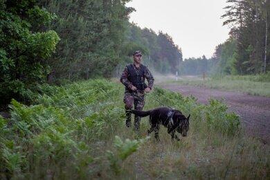 Ein litauischer Grenzschützer patrouilliert mit einem Hund an der grünen Grenze zu Belarus.