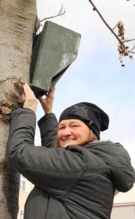 Sonja Fischer kontrolliert in der Plauener Innenstadt, in der Nähe des Diesterweg-Gymnasiums, einen Fledermauskasten.