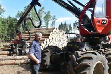 Manfred Selent und Mitarbeiter seiner Firma fällen die Bäume.